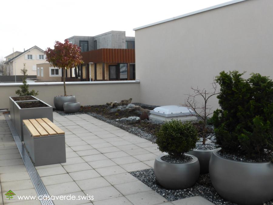 Casa Verde Innen Aussenbegrünung Ag Terrassenbegrünungen Terrassen